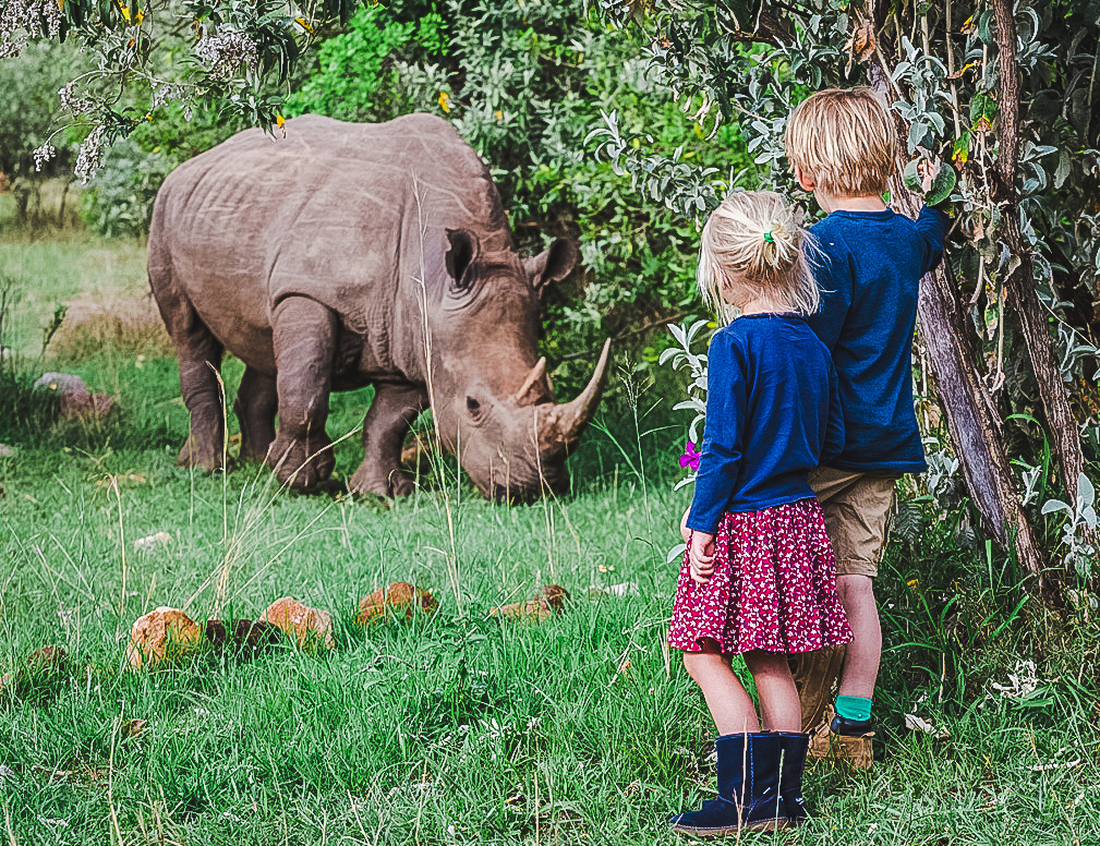 house in the wild rhino with children
